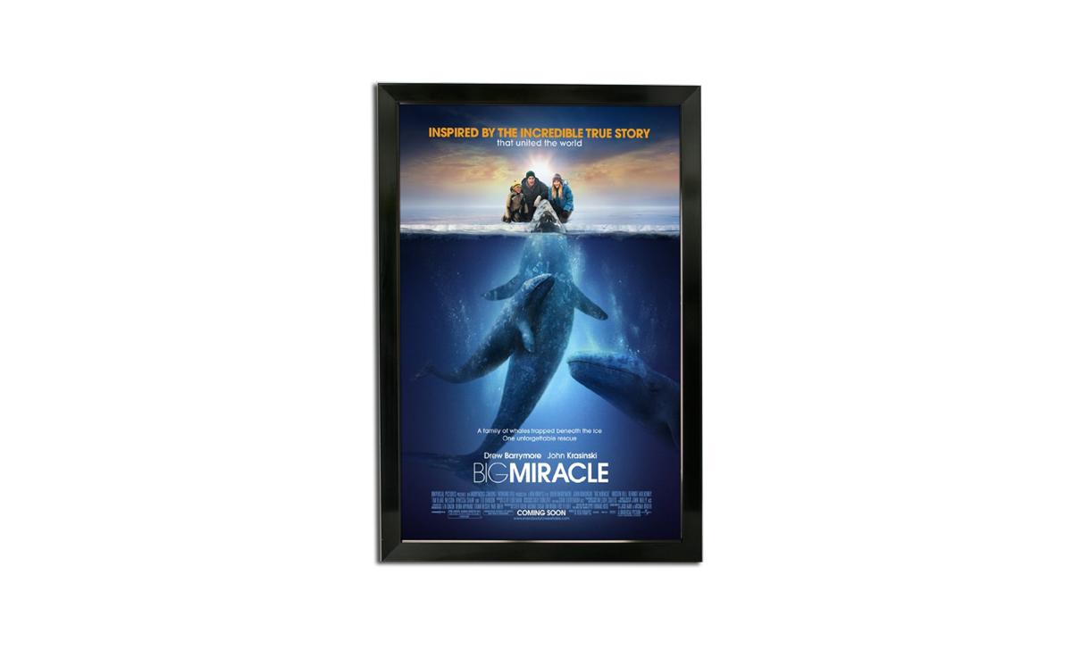 bass loc poster frame